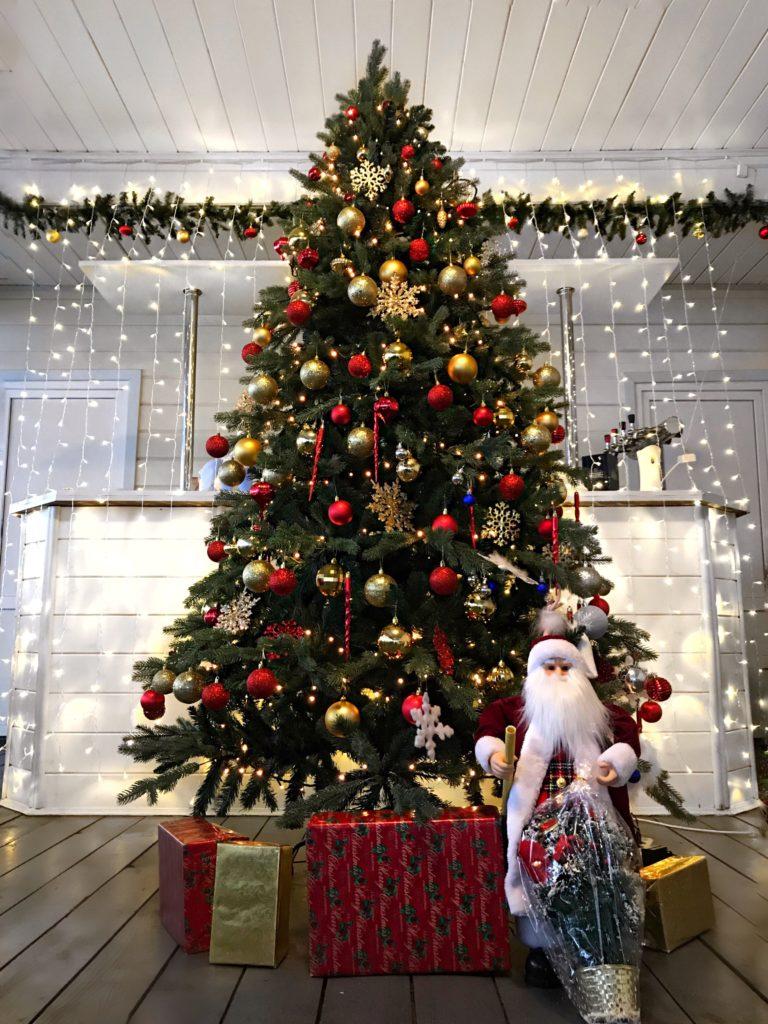 Новогодняя елка в ресторане «Бухта радости»